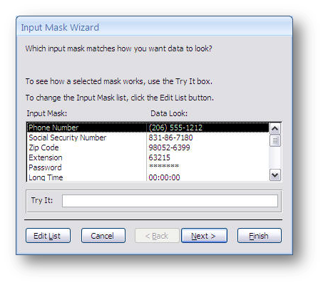 how to put input mask in access