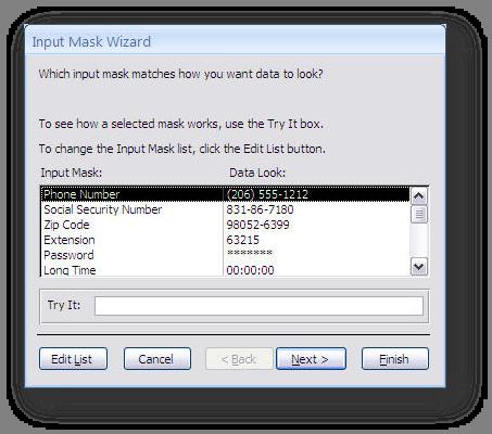 input mask dialog box