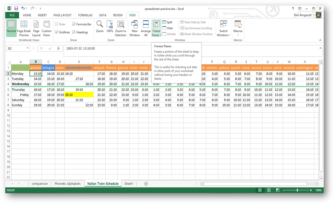 INLS161-003 Spring 2019 setting up a spreadsheet for your needs